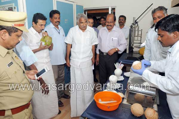 CPCRI, Coconut tree, Farmer, Protection, Project, Oommen Chandy, Kasaragod, Kerala, Malayalam news, Kasargod Vartha, Kerala News, International News, National News, Gulf News, Health News, Educational News, Business News, Stock news, Gold News