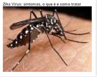 Zika Vírus: sintomas, o que é e como tratar