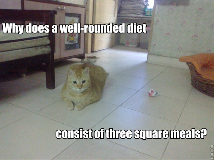 Why does a well-rounded diet consist of three square meals?