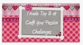 Craft Your Passion Top 3