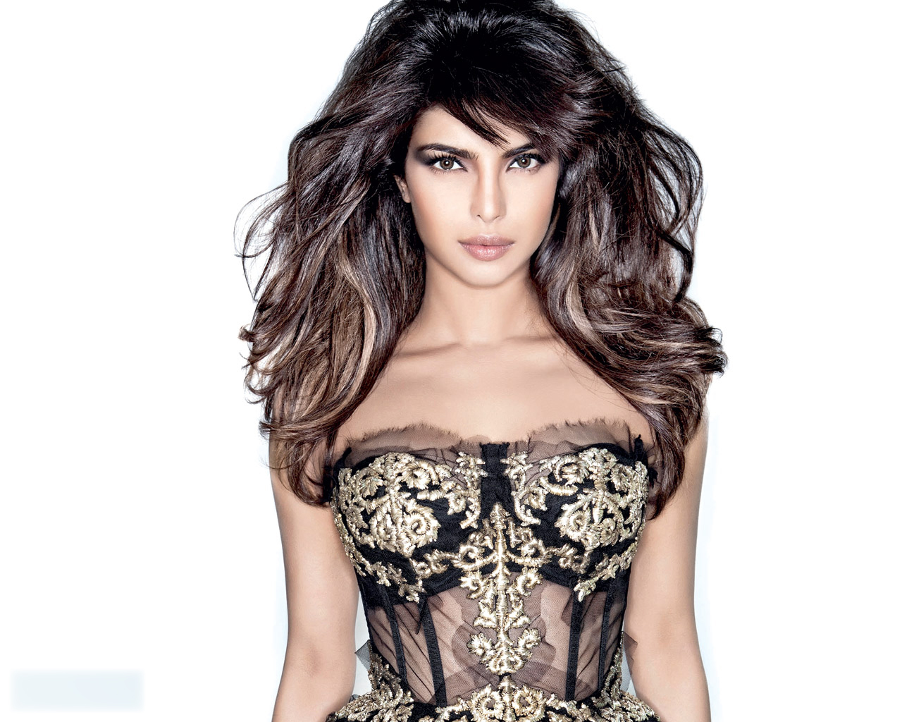priyanka chopra bikini wallpapers - photo #15