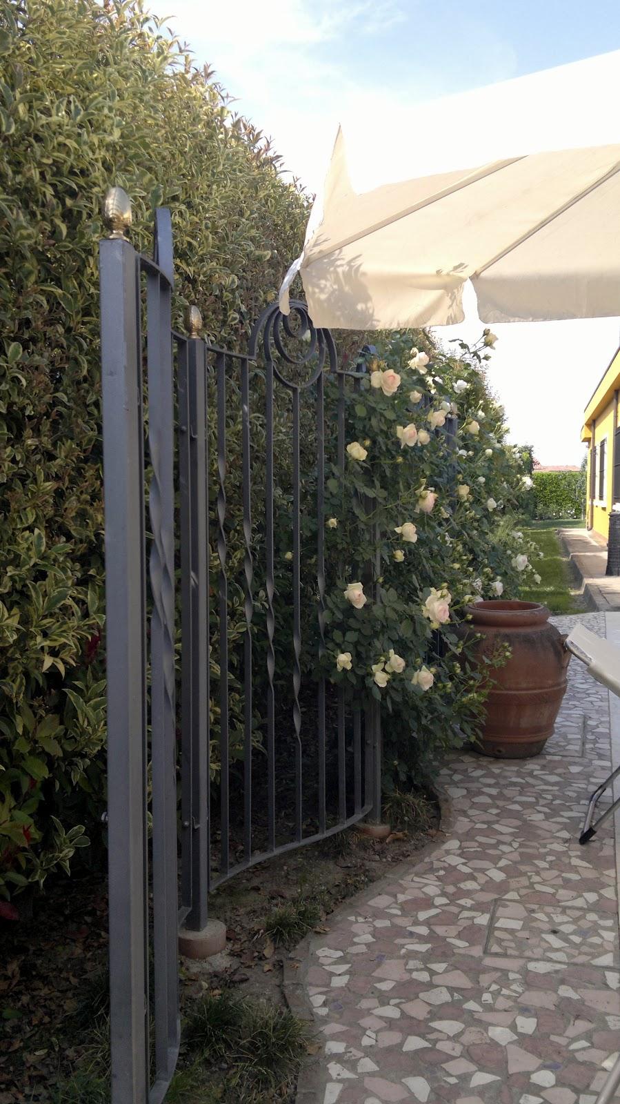 Archi tetti il ferro in giardino - Archi per giardino ...
