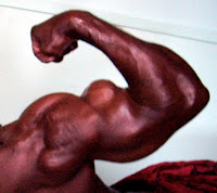 ROBBY ROBINSON - BICEPS PEAKS  ● www.robbyrobinson.net/motivation.php ●