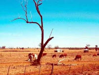 Chronic droughts to be normal perception with a considerably long time