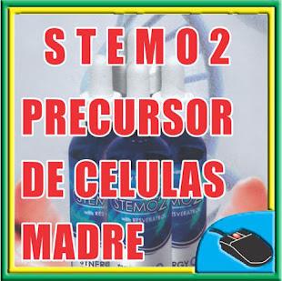 STEMO2 PRECURSOR DE CELULAS MADRE