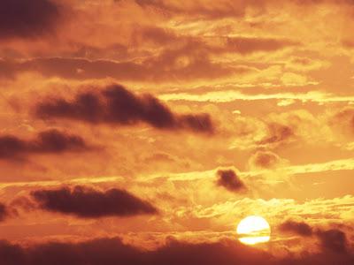 Sunset Golden Glow Percy Warner Park, Tennessee Wallpaper