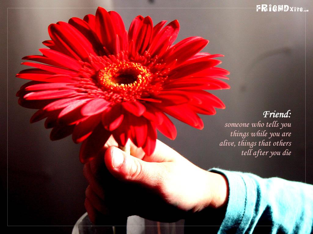 http://1.bp.blogspot.com/-_MF8nLcdMQk/TdTHp6qNCgI/AAAAAAAADRk/_xc0OslWCJk/s1600/friendship-wallpaper-4.jpg