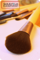 Salubrious Selection: EcoTools Cosmetic Brushes