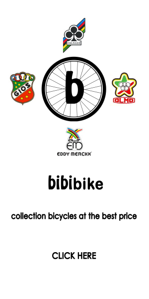 Bibibike collection bicycles