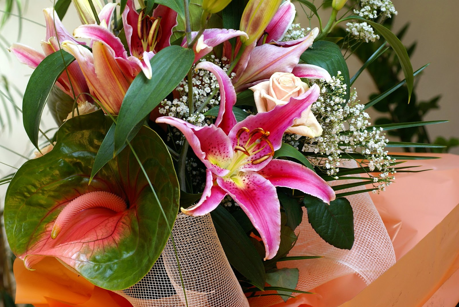 Floweraura Want Flowers Delivery In Lucknow Choose Our Local Florist