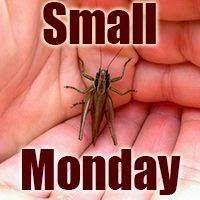 Small Monday