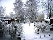 *Schnee2*