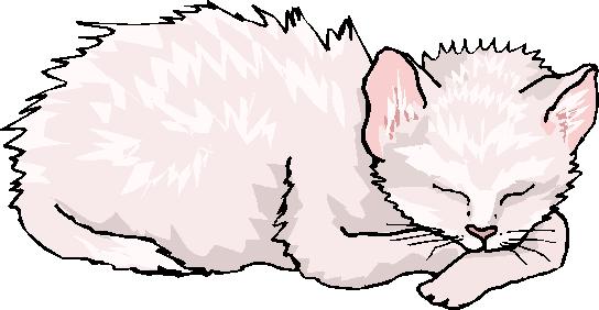 Sleeping White Cat Free Animal Clipart