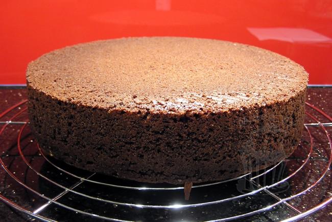 Schoko nuss kuchen tortentante