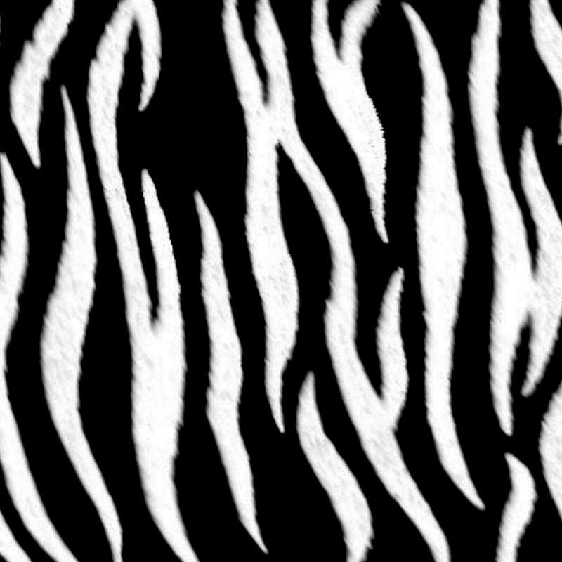 Textura Natural:Cebra | TEXTURAS-TIPOS | Pinterest
