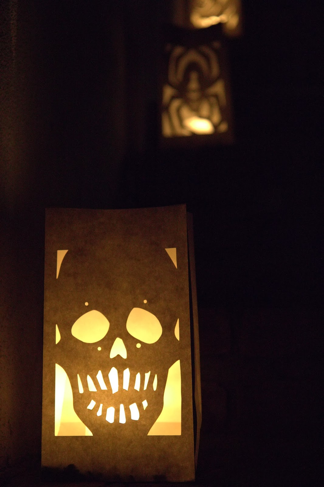 Scary luminarias lighting the pathway: Spooky Glam Halloween Party