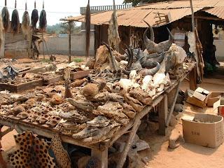 Lome Voodoo Market, Togo