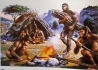 Società Tribale