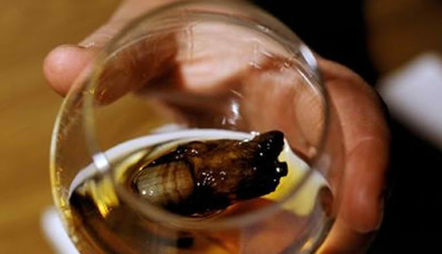 Man Fined £300 For Swallowing Human Toe In Whisky Cocktail