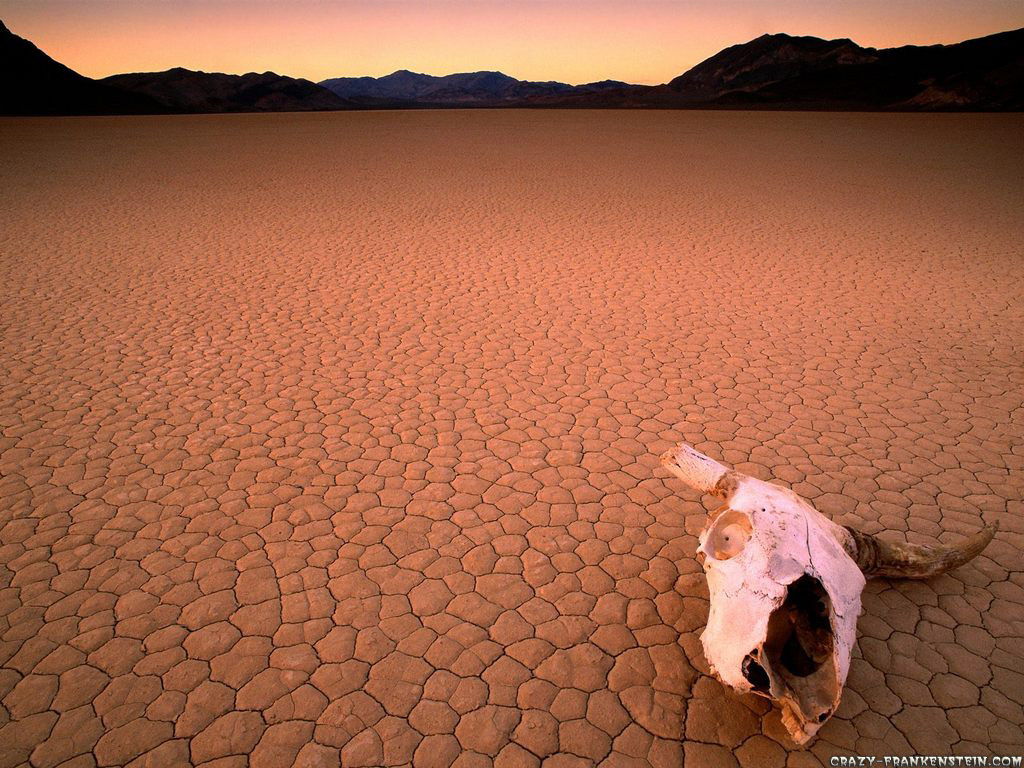 http://1.bp.blogspot.com/-_OsDowu2u-A/Tyq1icDamVI/AAAAAAAAJ2Q/94joOPdtSEw/s1600/bone-dry-death-valley-california-wallpaper.jpg