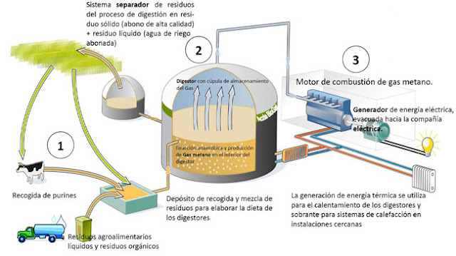Purines en produccion de biogas