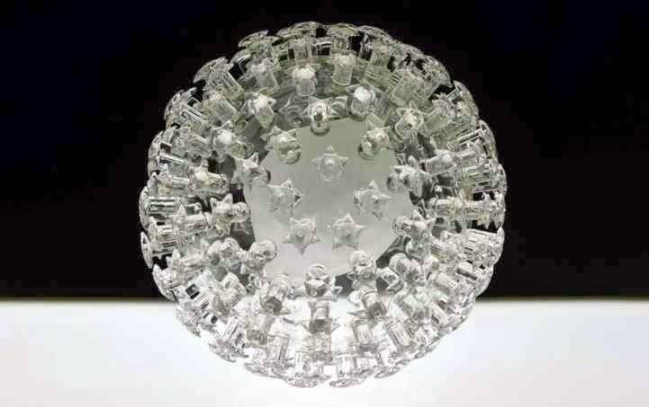 فيروس الورم الحليمي البشري Human Papillomavirus :