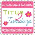 Titus 2 Tuesdays {Link-Up}