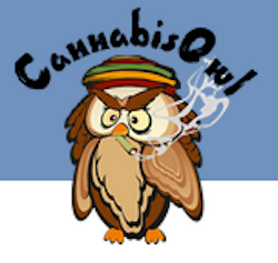 The Cannabis Owl