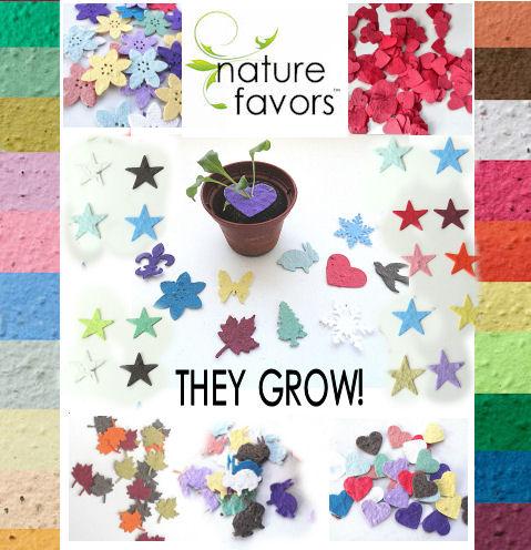 Flower Seed Confetti