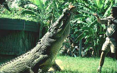食人鱷魚 20村民