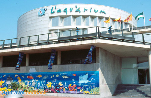 Aulas hospitalarias preparaci n de actividades pl sticas for Aquarium de barcelona