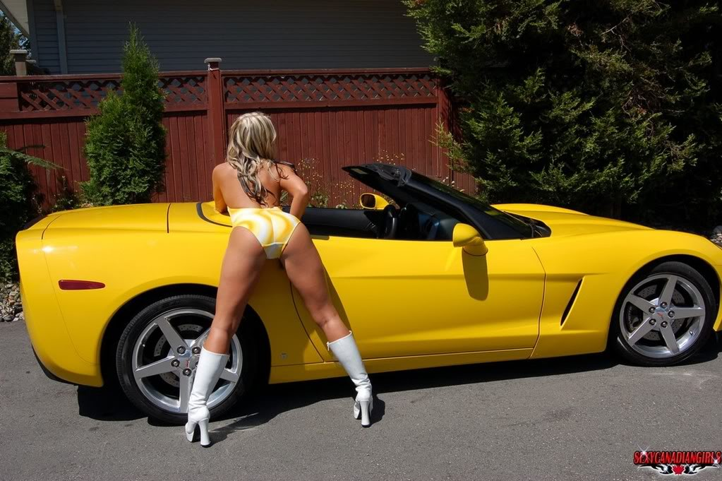 Corvette of the Day. Posted by Jeff Dunham at Wednesday, August 03, 2011