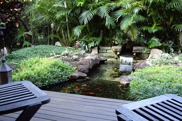 Garden design tropical garden design for Garden designs brisbane