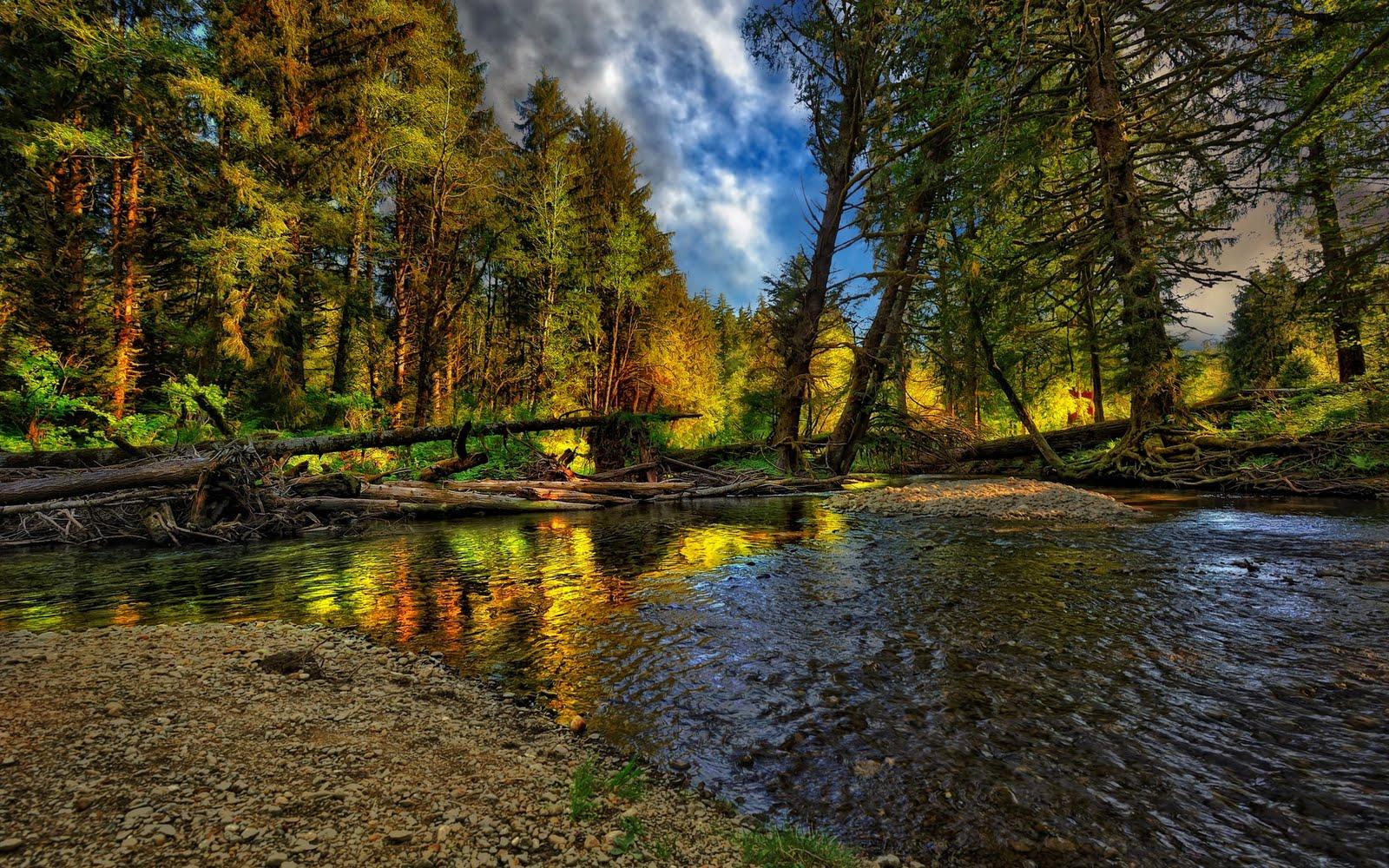 http://1.bp.blogspot.com/-_QWlWMJR9Uw/TqLwxSLrtFI/AAAAAAAAnzY/ZbmLcvvAZjw/s1600/rio-en-el-bosque-forest-hdr-1920x1200-wallpaper.jpg