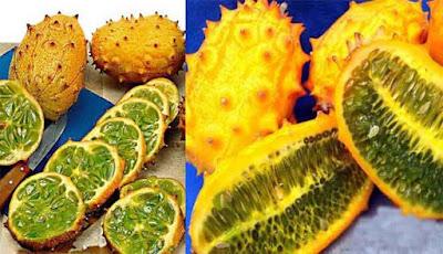 Manfaat buah kiwano bagi kesehatan