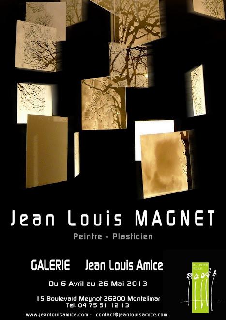 Exposition galerie Amice, Montélimar 2013