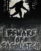 SKATERNOISE Beware of Sasquatch