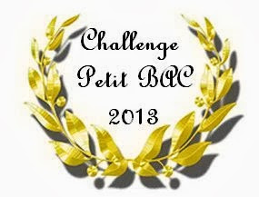 Challenge Petit Bac 2013 (31/12/2013)