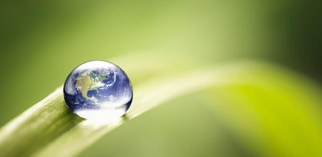Planeta Tierra y Medio Ambiente