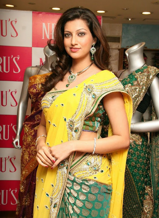 hamsa nandini saree at neeru