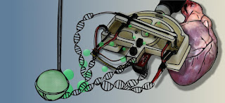 New medical device concept could reduce time to diagnose infections