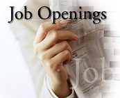 Jobs opening at 123indiajob.com