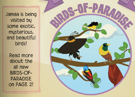 Animal jam spirit blog birds of paradise