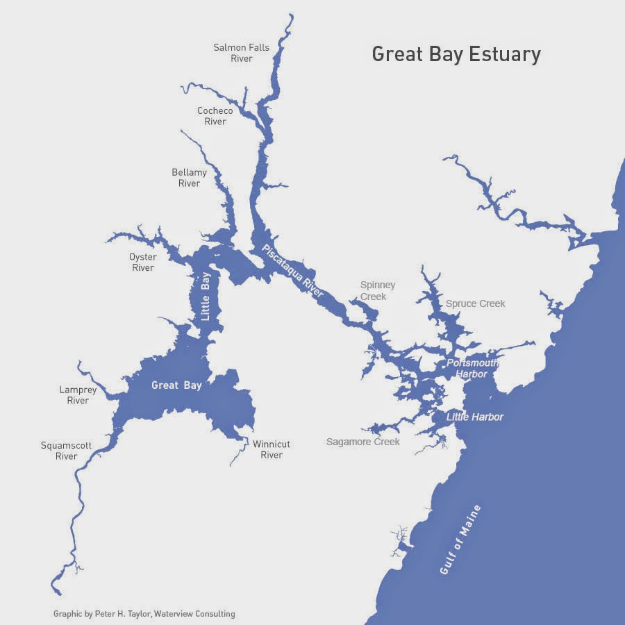 NH Great Bay Oyster Restoration