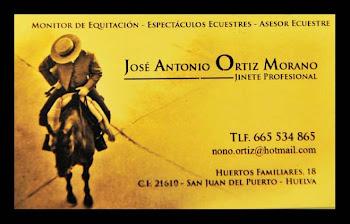 Monitor de Equitación-Espectáculos Ecuestre.