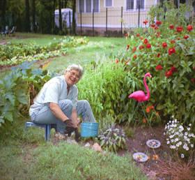 Ideas doradas para nuestros abuelos amados las plantas for Fotos de jardines caseros