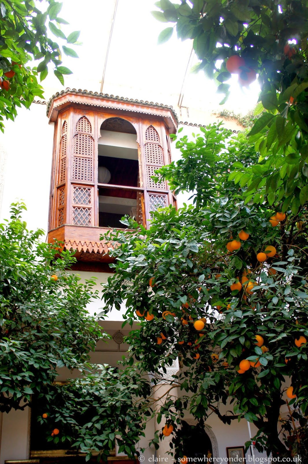 Inner courtyard at Riad Rafaele - complete with orange trees