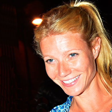 Gwyneth Paltrow Ponytail Hairstyle