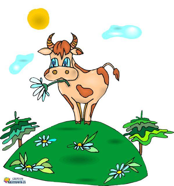 Vacas y Toros