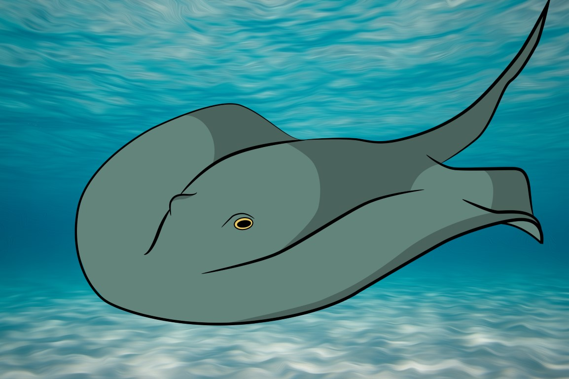 Finally, color your stingray, and put him in a nice watery habitat!